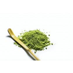 Bali Green